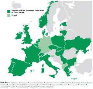 Europejska Federacja Banków Żywności zrzesza 256 Banków Żywności z 21 krajów.